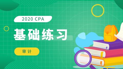 2020年CPA基础练习(审计)