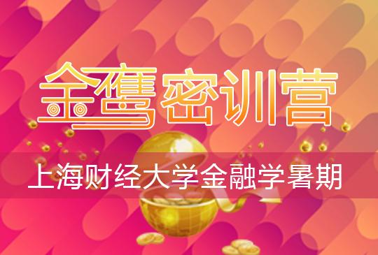 【金鹰密训营】上海财经大学金融学(810)暑期