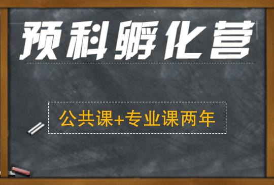 【预科孵化营】公共课+专业课两年