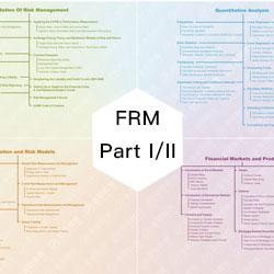 通关宝系列:金程教育FRM一二级知识地图(限时抢购)