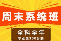 【周末系統班】全科全年(專業課300分制)