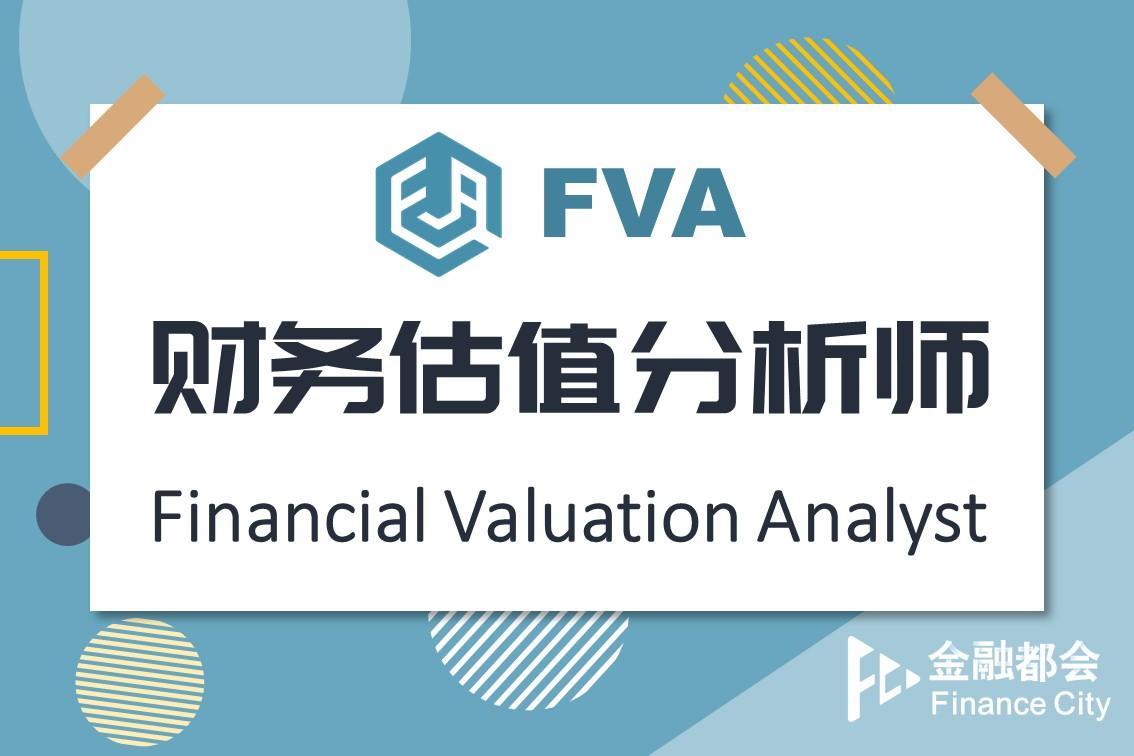 FVA财务估值分析师实训项目