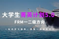 大學生菁英計劃5.0—FRM一二級方向