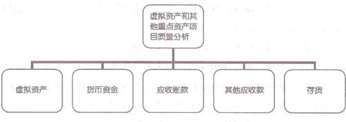 拟资产和其他重点资产项目质量分析主要内容