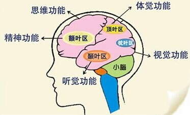 中文CMA考试不是死记硬背